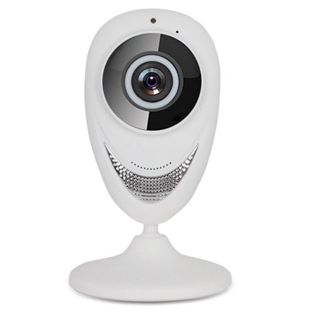 Network Panoramic Wireless HD Camera